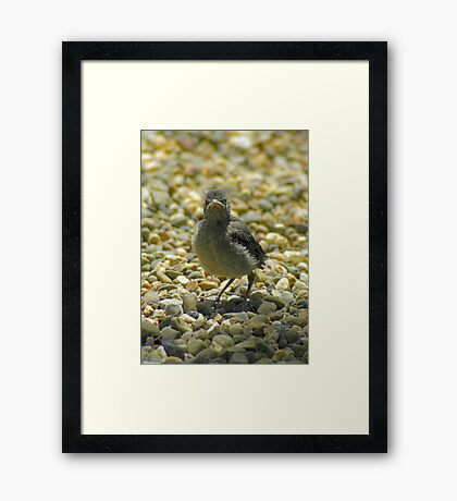 """I Don't Care""  Chick Card Framed Print"