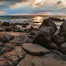 Rugged Beach at Nightfall by Tracy Riddell