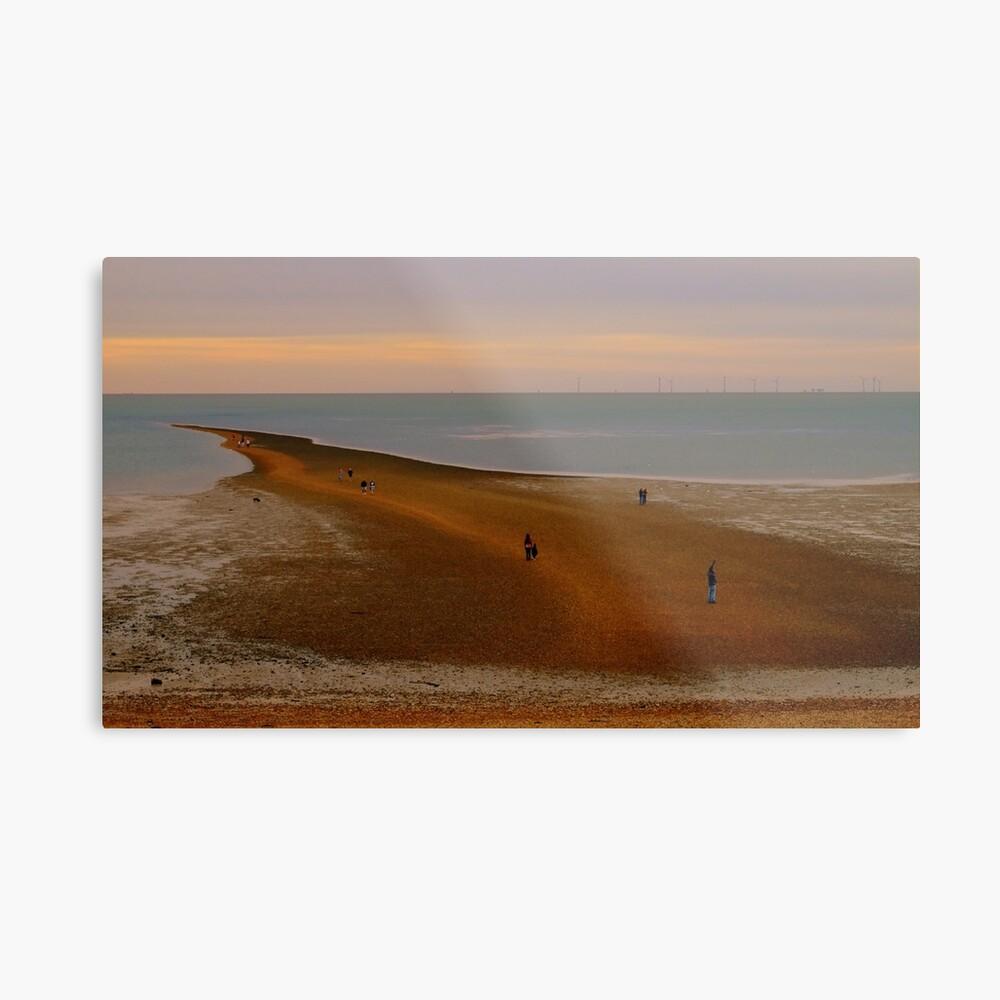 Low tide land Metal Print