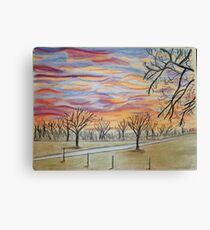 Winter in the Air Canvas Print