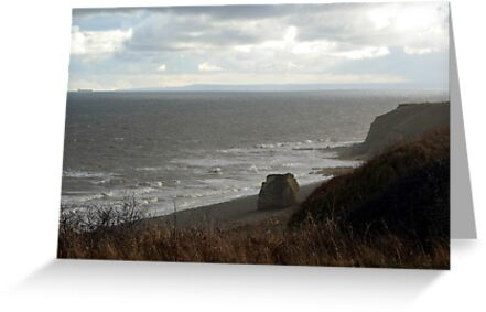 A Cold January Day by Carol Bleasdale
