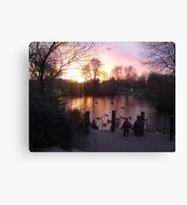 Tranquil glow of Winter Canvas Print