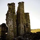 Ruins of Edlignham by DeePhoto