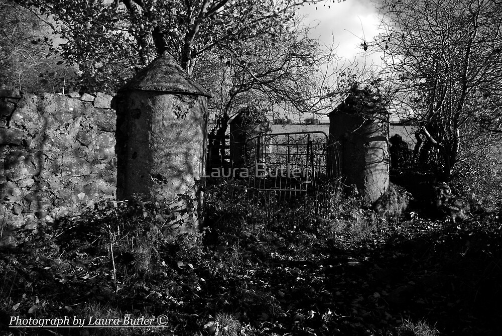 Stone Pillars, Clovervale, Abandoned Country House, County Antrim by Laura Butler