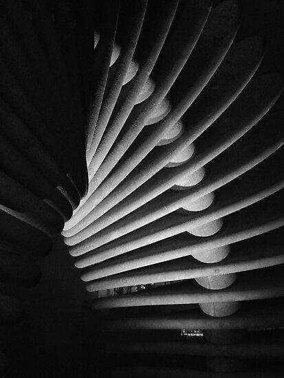 Darwin's Helix by seanusmaximus