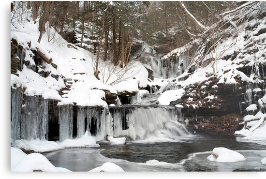 December Icicles Transform Ozone Falls by Gene Walls