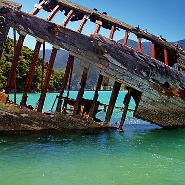 The Shipwreck by RobynCarter