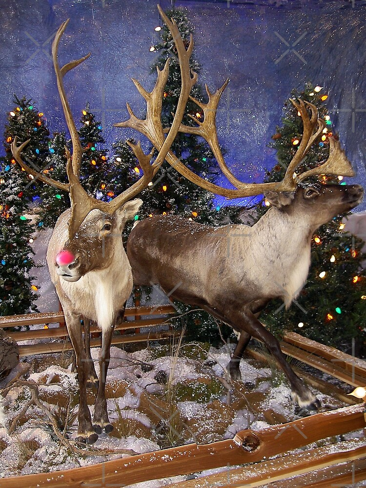 Rudolph, The Red Nosed Reindeer by CarolM