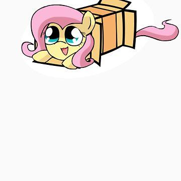Fluttershy in a box by alfa995