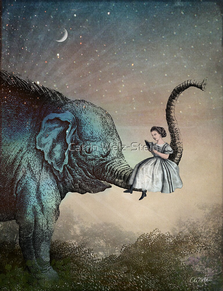 Bedtime Stories by Catrin Welz-Stein