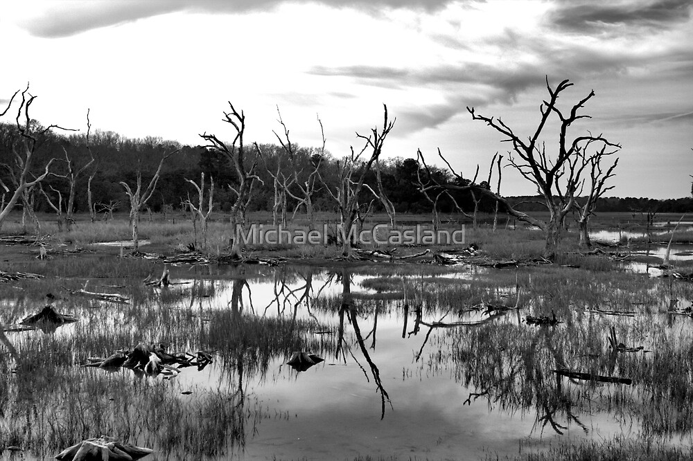 barren life by Michael McCasland