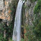 Purlingbrook Falls by hans p olsen