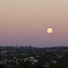 Full Moon by Amy Dee