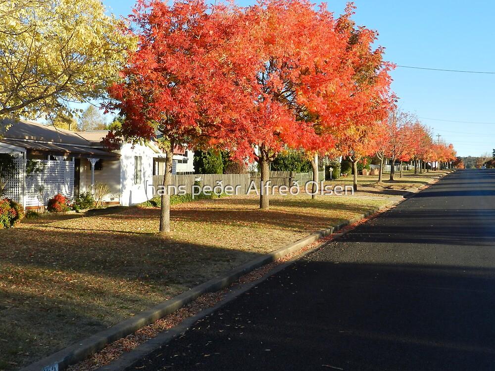 Autumn Street by hans p olsen