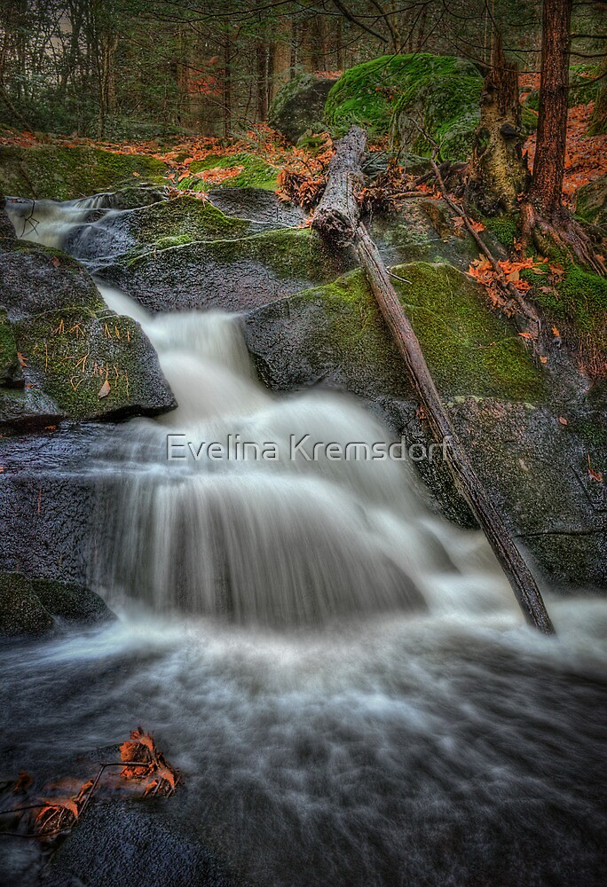 Let It Flow by Evelina Kremsdorf
