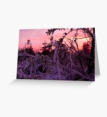 Frosted flakes Greeting Card