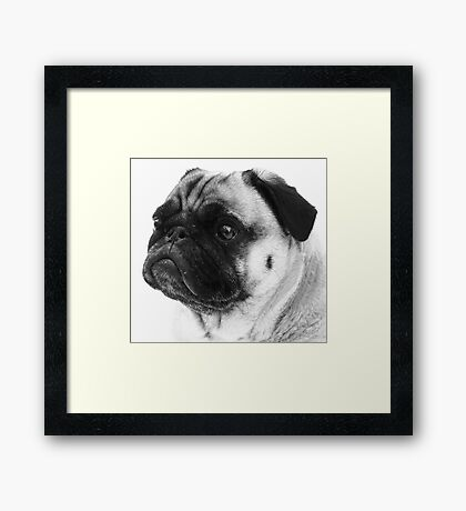 Love Those Wrinkles! Framed Print