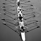 Rowers by seanusmaximus