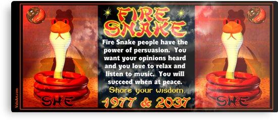 '1977 2037 Chinese zodiac fire snake ' Metal Print by Valxart