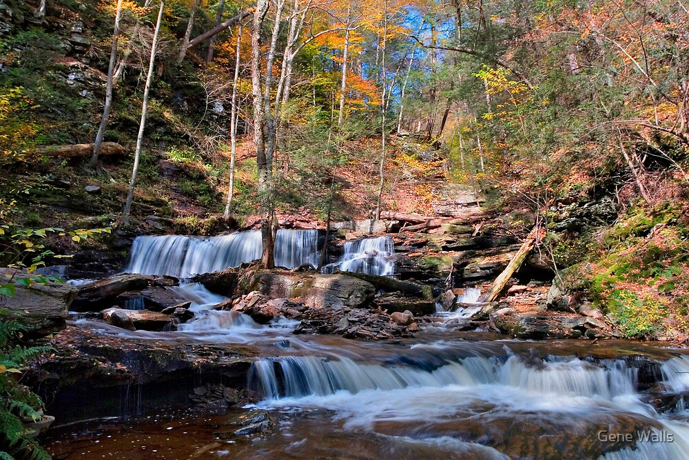 Delaware Falls on a Bright October Day by Gene Walls