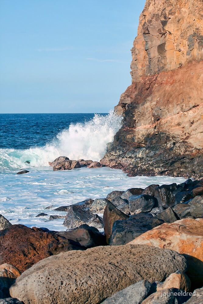 A Little Bit of Hawaii by jayneeldred