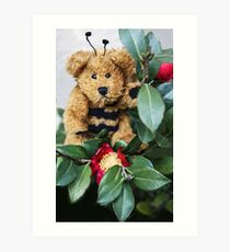Bumble Bear Art Print