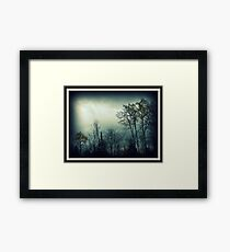 Serenity ! Framed Print