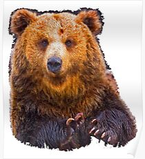 bear - hulk Poster