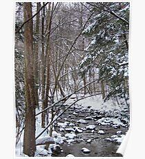 Mill Creek Meandering Poster
