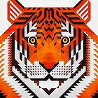 Triangle Tiger by Scott Partridge