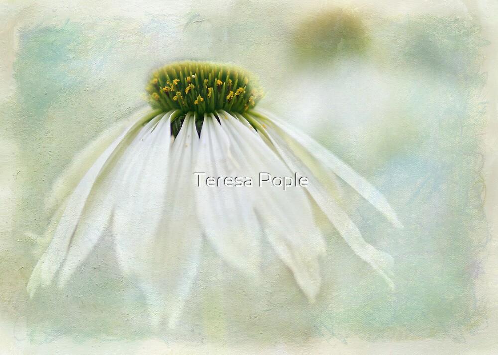 a whisper of summer by Teresa Pople