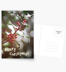 Christmas Berries II Postcards