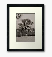 winter scene I Framed Print