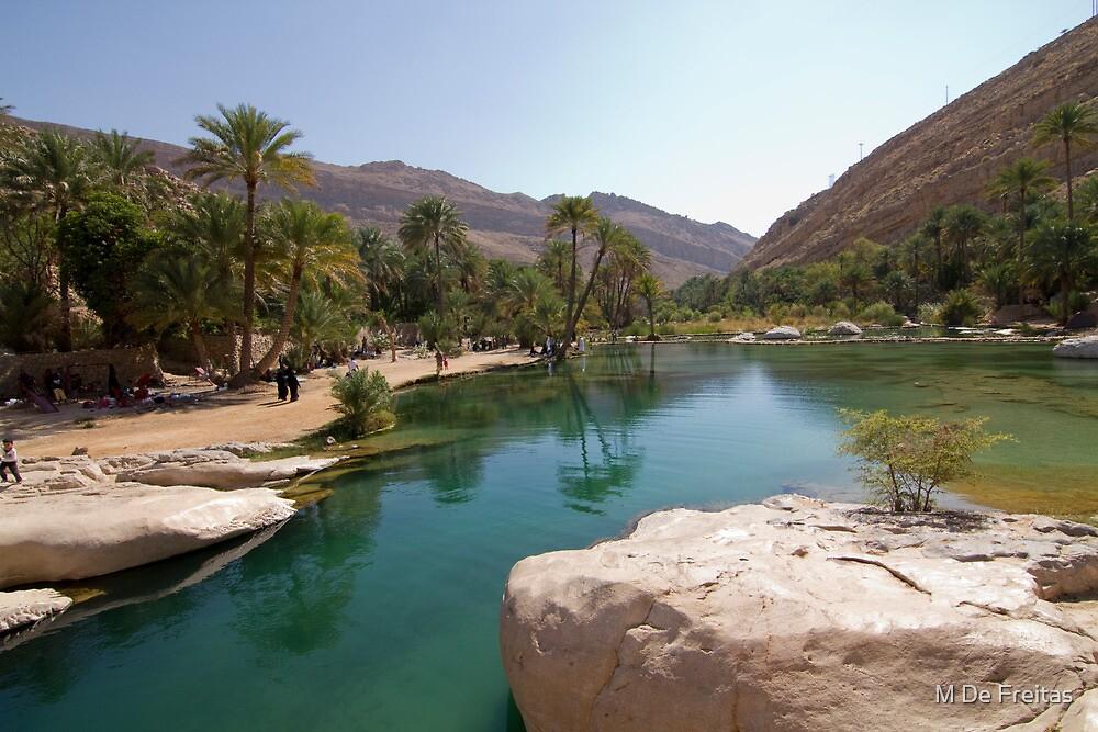 Oman,Wadi Bani Khalid by M De Freitas