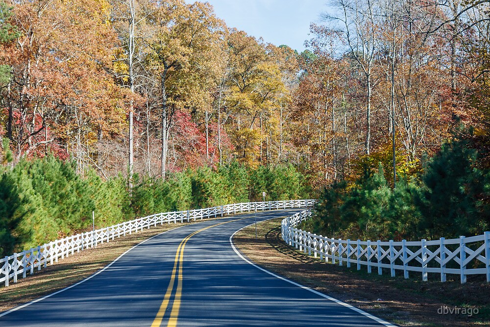 Road Curving Through Autumn Trees and White Fence by dbvirago