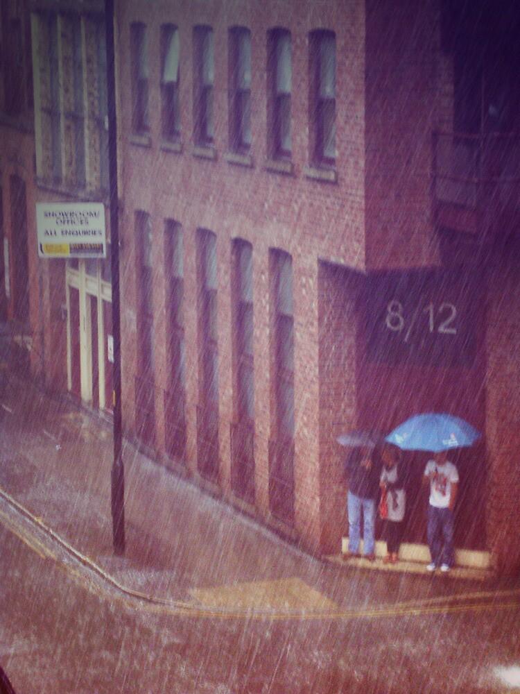Rain, HIDE! by Rob Browne