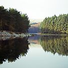 Entwistle Reflections by Sarah Williams