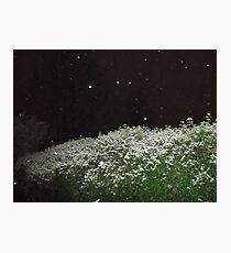 A touch of snow... Photographic Print