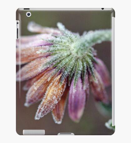 Daisy Frost iPad Case/Skin