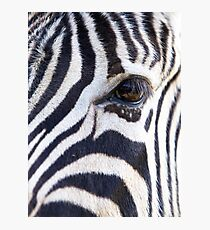 Zebra Eye soft face Photographic Print