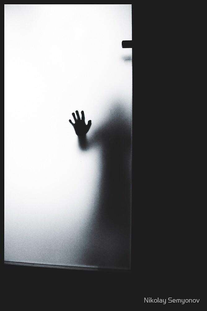 a ghost on 2d floor  by Nikolay Semyonov