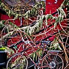 Brooklyn Bicycle by Mark Ross
