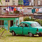 Vintage Green by Janice Chiu