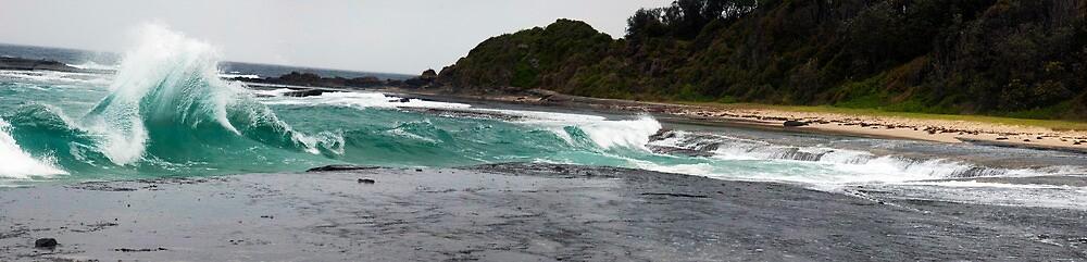 Dolphin point by Glen Johnson