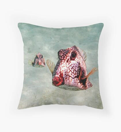 Hey... What's Up? Throw Pillow