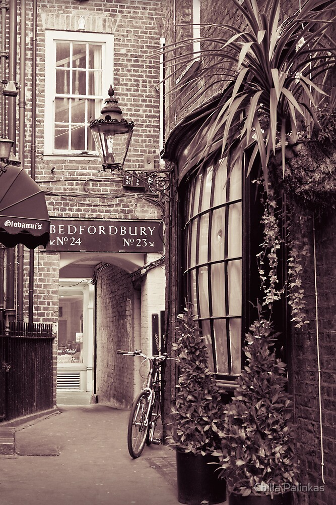 A charming little alley in Covent Garden, London by Chilla Palinkas