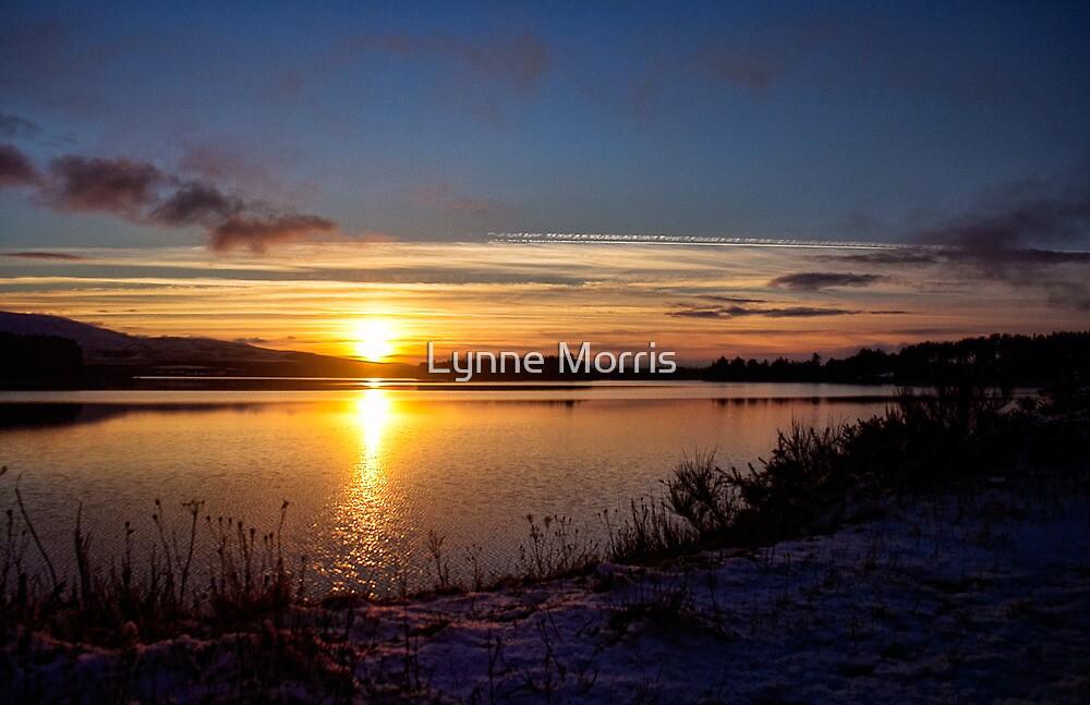 Winter Sunset by Lynne Morris