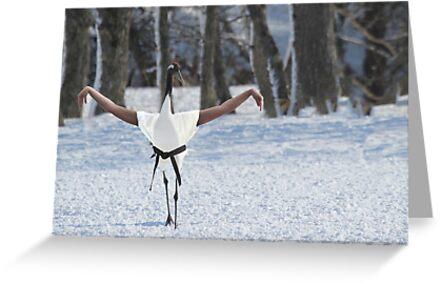 Crane stance by Felfriast