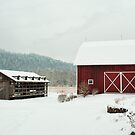 A different view of the barn by Penny Fawver