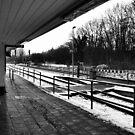 Railway station - bw by OLIVER W